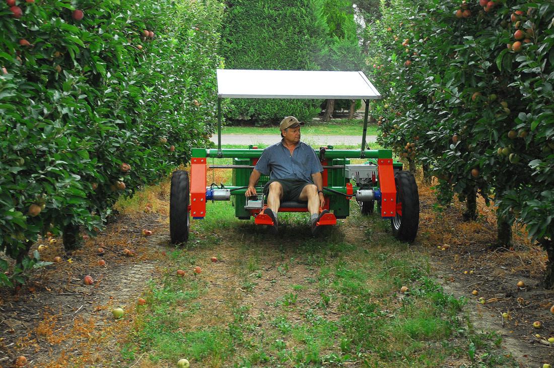 macchina raccolta melone