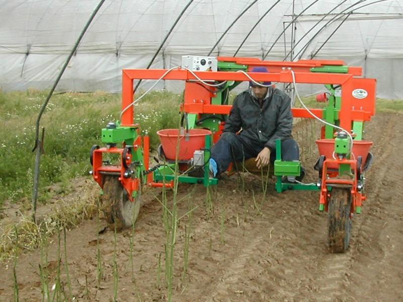 macchina-elettrica-per-raccolta-asparagi-verdi