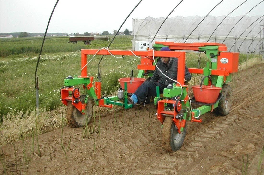 trattorino-elettrico-multis-monoposto-raccolta-asparagi-verdi